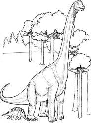 plansa de colorat animale dinozauri de colorat p61