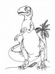 plansa de colorat animale dinozauri de colorat p81
