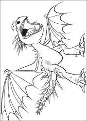 plansa de colorat animale dragoni de colorat p11