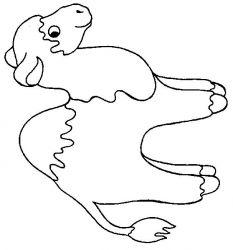 plansa de colorat animale dromaderi de colorat p07