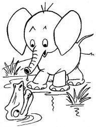 plansa de colorat animale elefanti de colorat p05