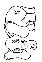 plansa de colorat animale elefanti de colorat p09