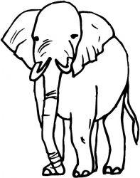 plansa de colorat animale elefanti de colorat p21