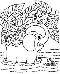 plansa de colorat animale elefanti de colorat p23