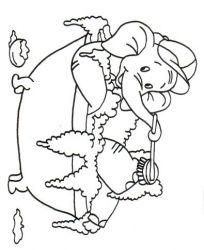 plansa de colorat animale elefanti de colorat p29