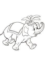 plansa de colorat animale elefanti de colorat p43