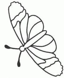 plansa de colorat animale fluturasi de colorat p03