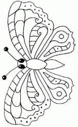 plansa de colorat animale fluturasi de colorat p20