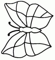 plansa de colorat animale fluturasi de colorat p37