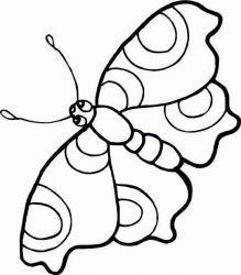 plansa de colorat animale fluturasi de colorat p39
