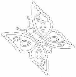 plansa de colorat animale fluturasi de colorat p41