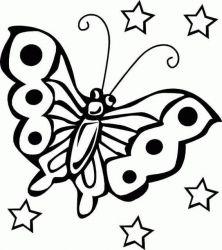 plansa de colorat animale fluturasi de colorat p45
