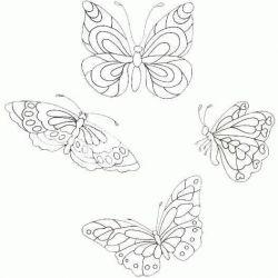 plansa de colorat animale fluturasi de colorat p47