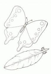 plansa de colorat animale fluturasi de colorat p48
