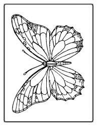 plansa de colorat animale fluturasi de colorat p77
