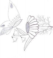 plansa de colorat animale fluturasi de colorat p81
