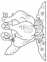plansa de colorat animale gaste de colorat p08