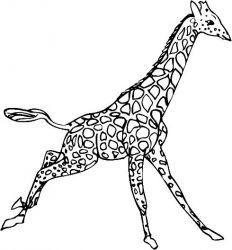 plansa de colorat animale girafe de colorat p20