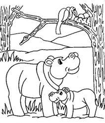 plansa de colorat animale hipopotami de colorat p06