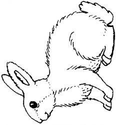 plansa de colorat animale iepurasi de colorat p13
