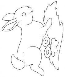 plansa de colorat animale iepurasi de colorat p41