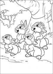 plansa de colorat animale iepurasi de colorat p54