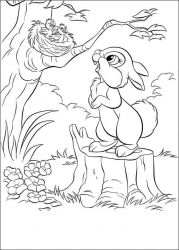 plansa de colorat animale iepurasi de colorat p59