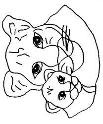 plansa de colorat animale lei de colorat p17