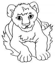 plansa de colorat animale lei de colorat p19