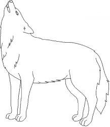 plansa de colorat animale lupi de colorat p09