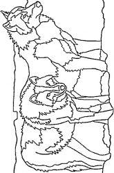 plansa de colorat animale lupi de colorat p13
