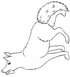 plansa de colorat animale lupi de colorat p18