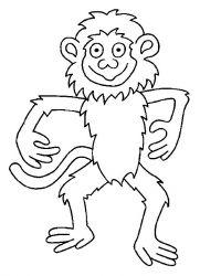 plansa de colorat animale maimute de colorat p05