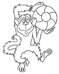 plansa de colorat animale maimute de colorat p06
