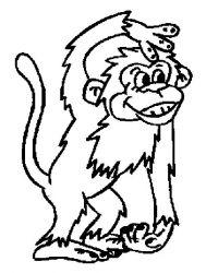 plansa de colorat animale maimute de colorat p12