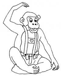 plansa de colorat animale maimute de colorat p16