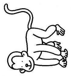 plansa de colorat animale maimute de colorat p27