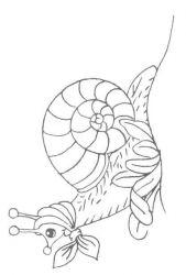 plansa de colorat animale melci de colorat p06