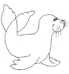plansa de colorat animale morse si foci de colorat p08