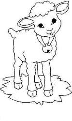 plansa de colorat animale oi de colorat p10