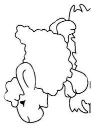 plansa de colorat animale oi de colorat p19