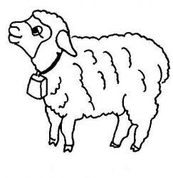 plansa de colorat animale oi de colorat p23