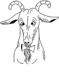 plansa de colorat animale oi de colorat p24