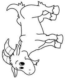 plansa de colorat animale oi de colorat p28