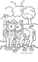 plansa de colorat animale oi de colorat p44