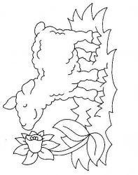 plansa de colorat animale oi de colorat p46