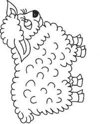 plansa de colorat animale oi de colorat p49