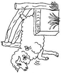 plansa de colorat animale oi de colorat p51