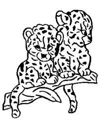 plansa de colorat animale pantere de colorat p09