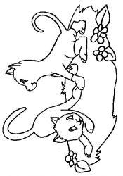 plansa de colorat animale pisici de colorat p14